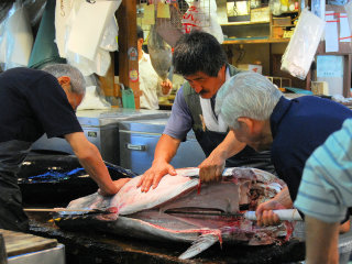 The Tsukiji Market © Noah Dropkin
