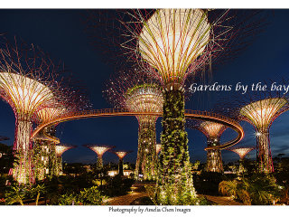 Gardens By The Bay © Amelia Chen