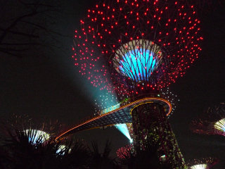 Gardens By The Bay © tee_eric