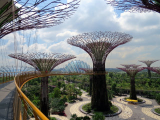 Gardens By The Bay © David Berkowitz