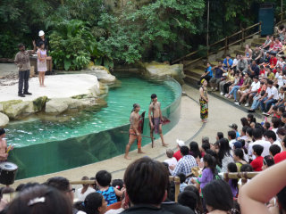 Singapore Zoo © krebsmaus07