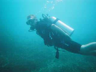 Bubba Diving Phuket © Neil Rickards