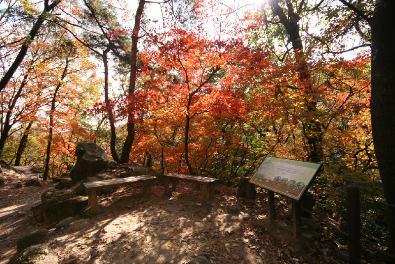 Bukhansan National Park In Seoul Attraction In Seoul