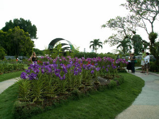 Orchid Park (Taman Orkid)