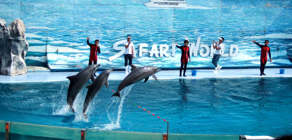 Safari World Animals Amp Aquarium In Bangkok Attraction