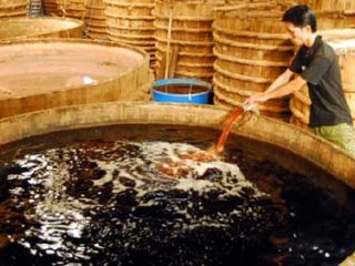 A traditional fish sauce factory © vietnamnews