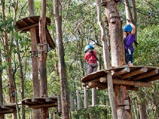 Fun Park Treetop Experience © funny-picture