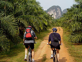 Krabi Waterfall Cycling - Half Day Tour