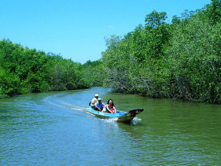 Can Gio Mangrove Biosphere Reserve 1 Day Tour