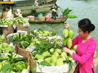 Mekong Delta Tour: My Tho - Ben Tre 1 Day Tour © vietnamtravelways
