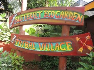 Palawan Butterfly Ecological Garden and Tribal Village © tripadvisor