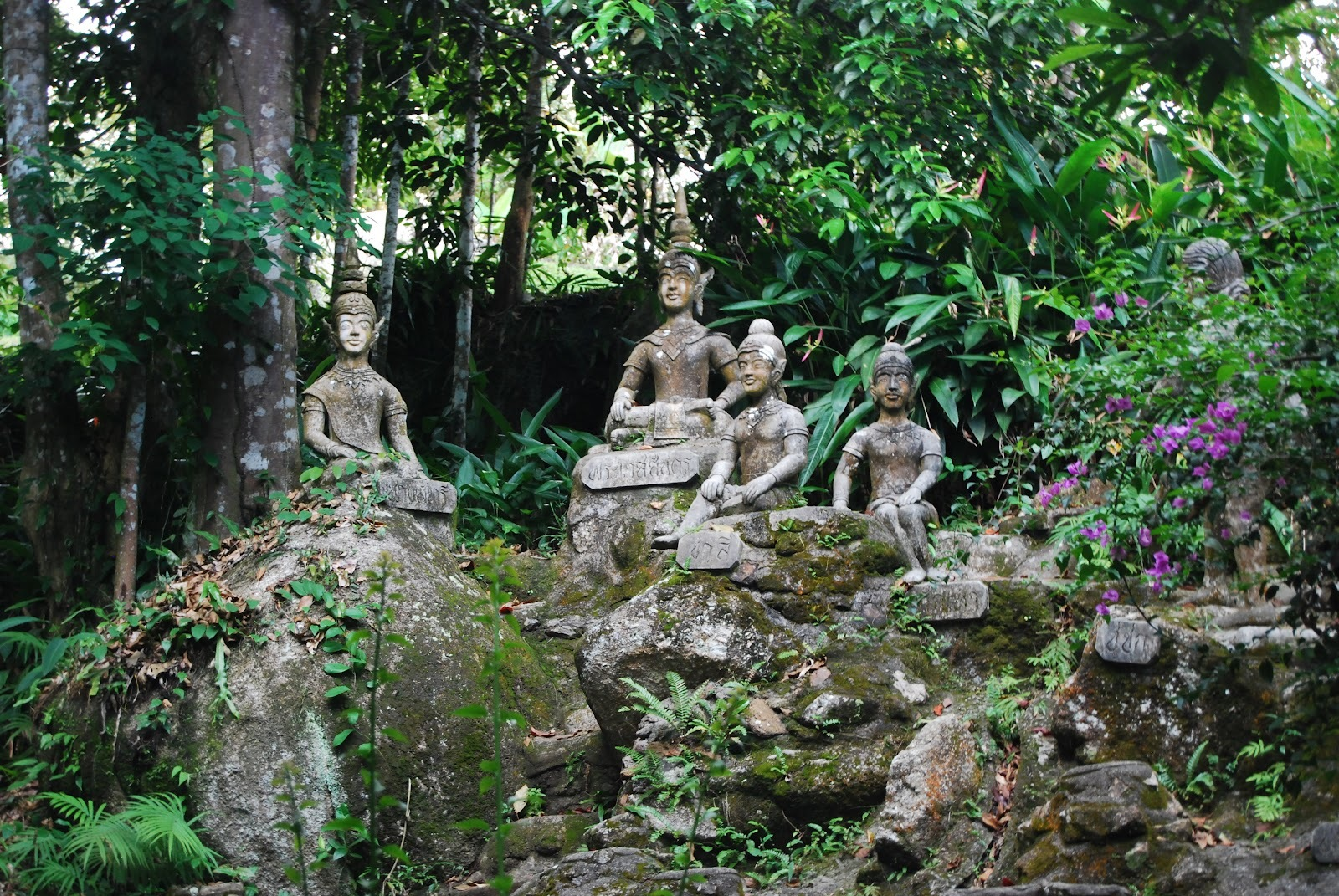 Attractive Secret Buddha Garden U0026copy; Turtlepack