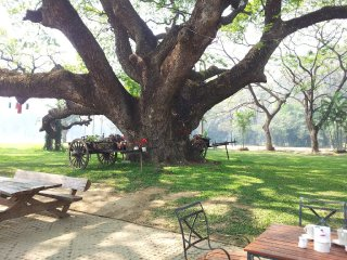 Chiangmai Gymkhana Golf and Sports Club © panoramio