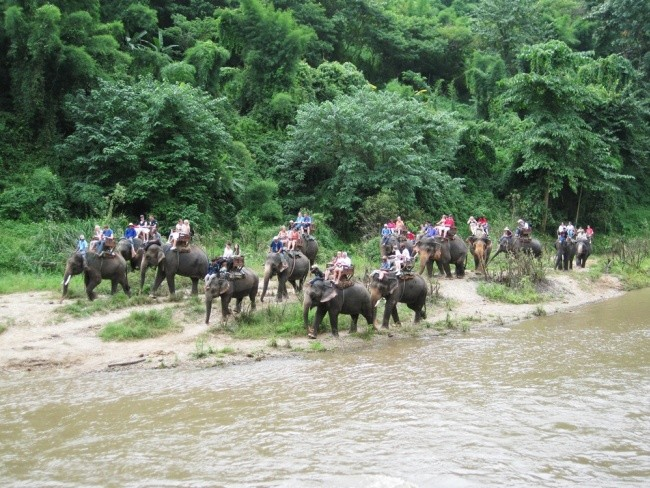 Elephant Safari At Mae Tamaan Elephant camp ,Orchid Farm and the Long neck Village