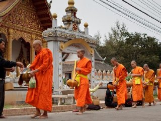 1 Day - LUANG PRABANG CULTURAL CITY TOUR - ELEPHANT CAMP, TEMPLES, ETHNIC CENTER