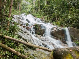 Back to Nature - Templer's Park (Waterfall), Hot Spring & Batu Caves © panoramio