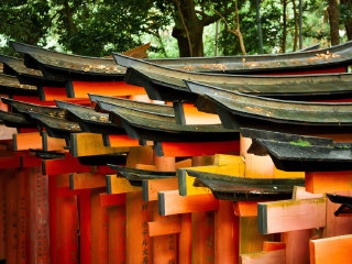Fushimi Inari Shrine © NatasiaCausse