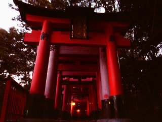 Fushimi Inari Shrine © Mark Roy