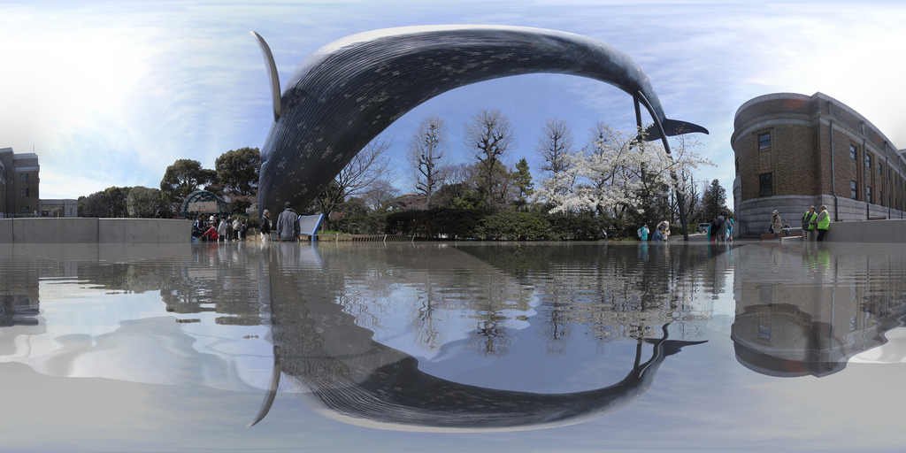 National Museum of Nature and Science in Tokyo ...