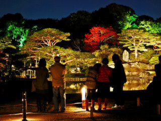 AUTUMN ILLUMINATION AT RIKUGIEN GARDEN © scion_cho