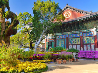 Jogyesa Temple © travel oriented