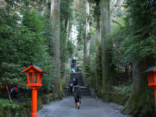 Hakone Shrine / Kuzuryu Shrine Singu © ume-y