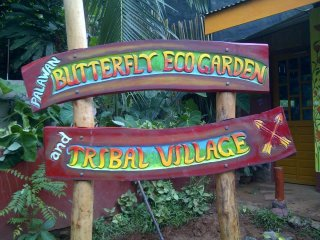 Palawan Butterfly Ecological Garden and Tribal Village © Palawan Butterfly Eco-Garden and Tribal Village