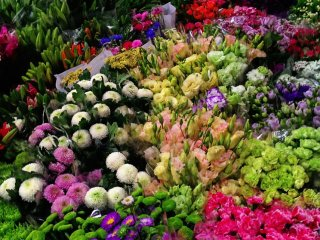 Laitai Flower Market © Tracy W.