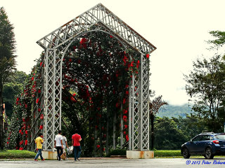 Queen Sirikit Botanical Garden © ol'pete