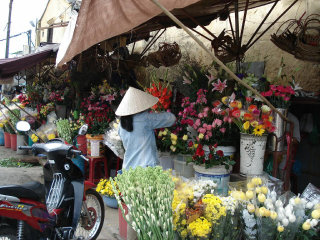 Visit Hoi An Market in the early morning © ssedro
