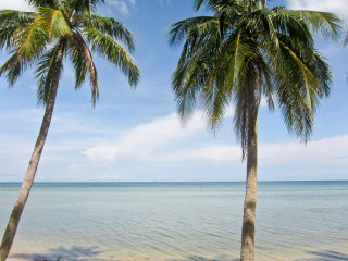 Explore South & North Phu Quoc by car © jennifer yin