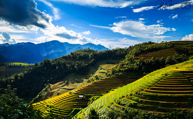 Mu Cang Chai backpacking trip
