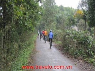 Ba Vi National Park Mountain Biking Day Tour