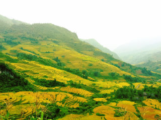 3 days 2 nights in Sapa © Hiếu Nguyễn