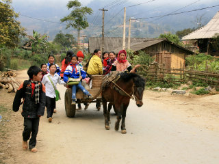 Market Trekking And Homestay Tour in Bac Ha area
