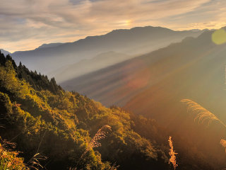 Alishan National Scenic Area