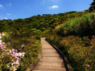 Mount Datun at Yangmingshan National Park