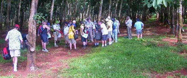 Long Tan - Nui Dat Battle Field (Full Day Tour) in Ho Chi Minh - Activity in Ho Chi Minh, Vietnam - Justgola