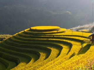 Discovery the Best Viet Nam Rice Terrace - Mu Cang Chai Motorbike 3 Days Tour from Hanoi