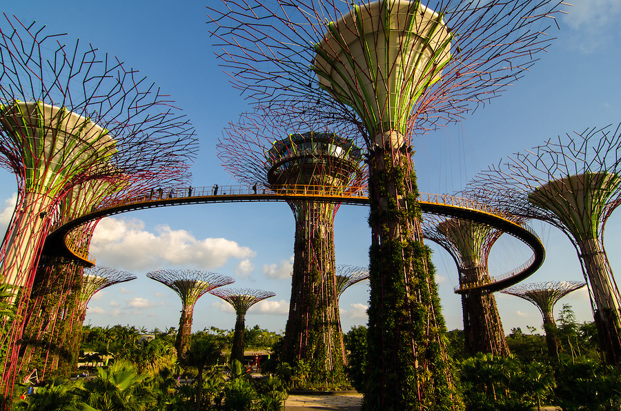 garden by the bay entrance fee singapore gardens cloud forest - Garden By The Bay Entrance Fee