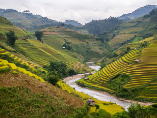 Motorbike Sapa – Mu Cang Chai Tour 6 Days 5 Nights © Lily