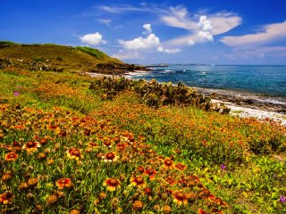 Kenting National Park & Kaohsiung City Tour © editiontravel