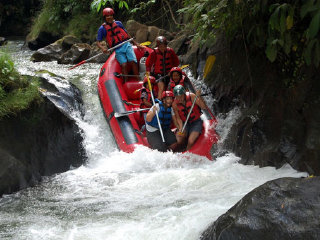 Bali Rafting and Ubud Village Tour