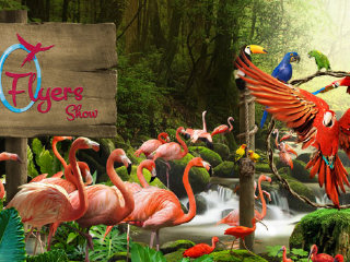 Attraction Combo: 3-in-1: Singapore Zoo + Night Safari + Bird Park Ticket © bluetravel