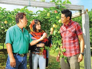 Tropical Fruit Farm Tour © malaysiasightseeingtours