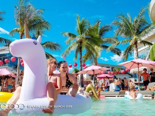 Cocoon Restaurant and Beach Club © Cocoon Beach Club
