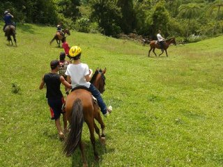Big Q Farm © BIG Q's Mountain Horseback Riding Adventure