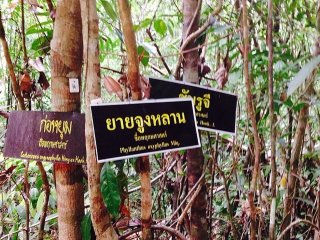 Khao Pra-Bang Khram Wildlife Sanctuary
