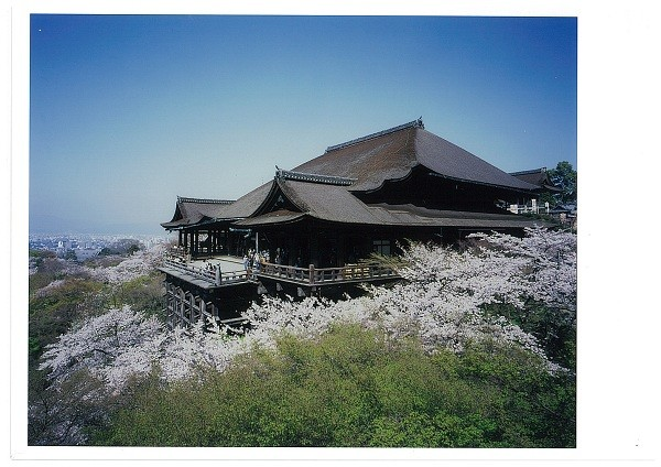1-Day Express Kyoto Tour from Tokyo (Reserved Seat Shinkansen)