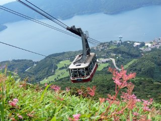 1-Day Mt. Fuji & Hakone Tour (Return by Motorcoach) (From Shinjuku)